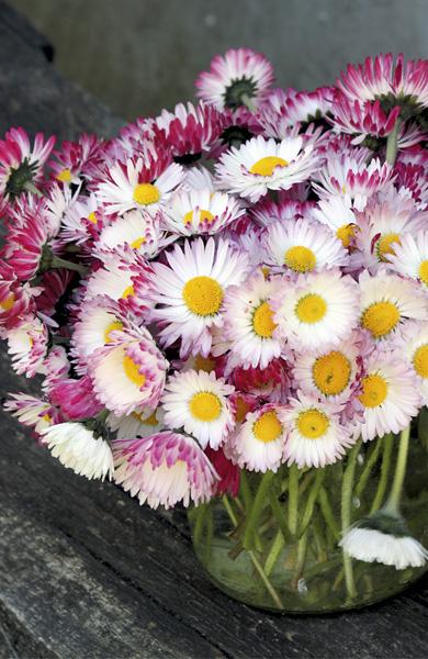 Decorando la boda con flores