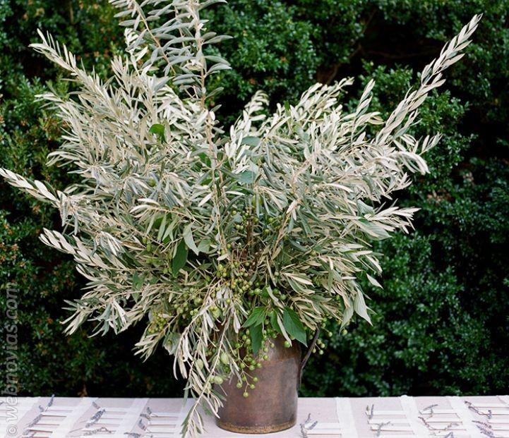 Decora tu boda con ramas de olivo4