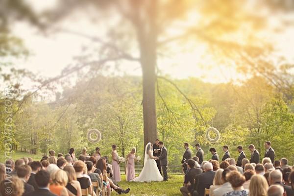 El lugar perfecto para la boda